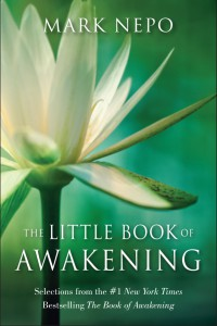 little book of awakening-cover