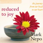 reduced_to_joy_cd_300