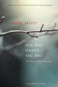 The Way Under The Way-Nepo-Final Cover